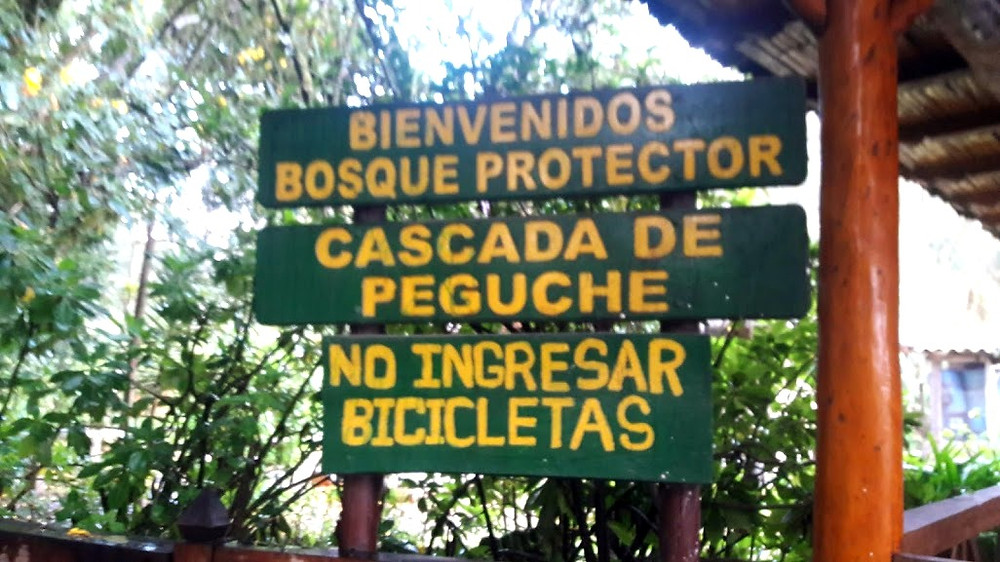 Bosque Protector Cascada de Peguche / The forest is managed by the community of Faccha Llacta and at the entrance is the Community Tourism Office. When registering, they offer information about the place and the rules for visitors and campers.