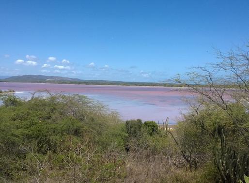 Las Salinas de Cabo Rojo