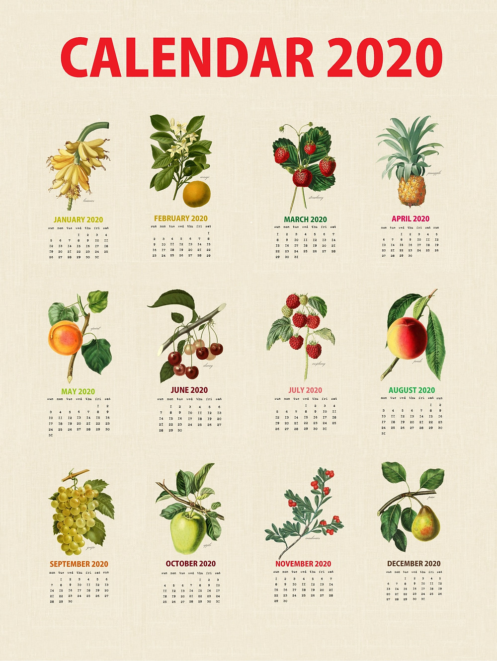 2020 Botanical Fruits Calendar
