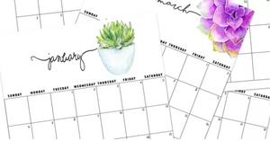Free 2019 Calendar Printable