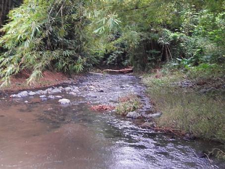 Río Caín Alto, San Germán