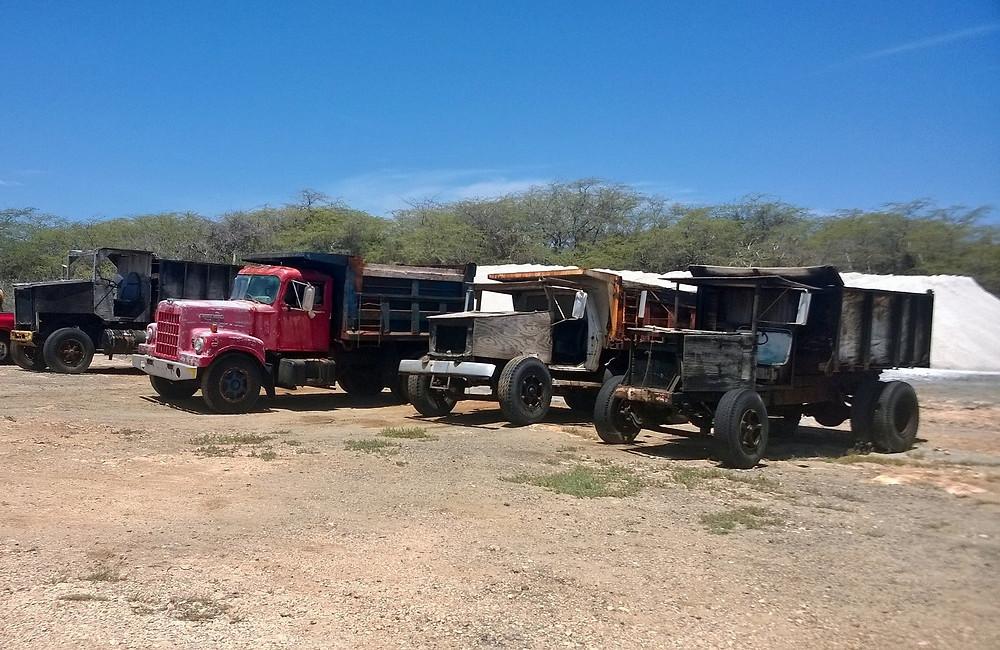 camiones que su carrocería es de madera ya que la sal corroe el hierro.