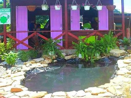 Jardín Reverdece, Lajas