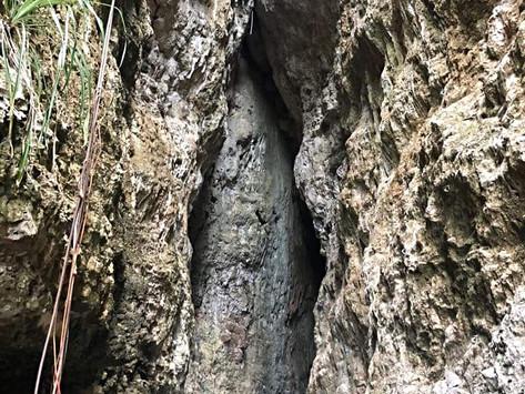 Parque Julio Enrique Monagas, Bayamón