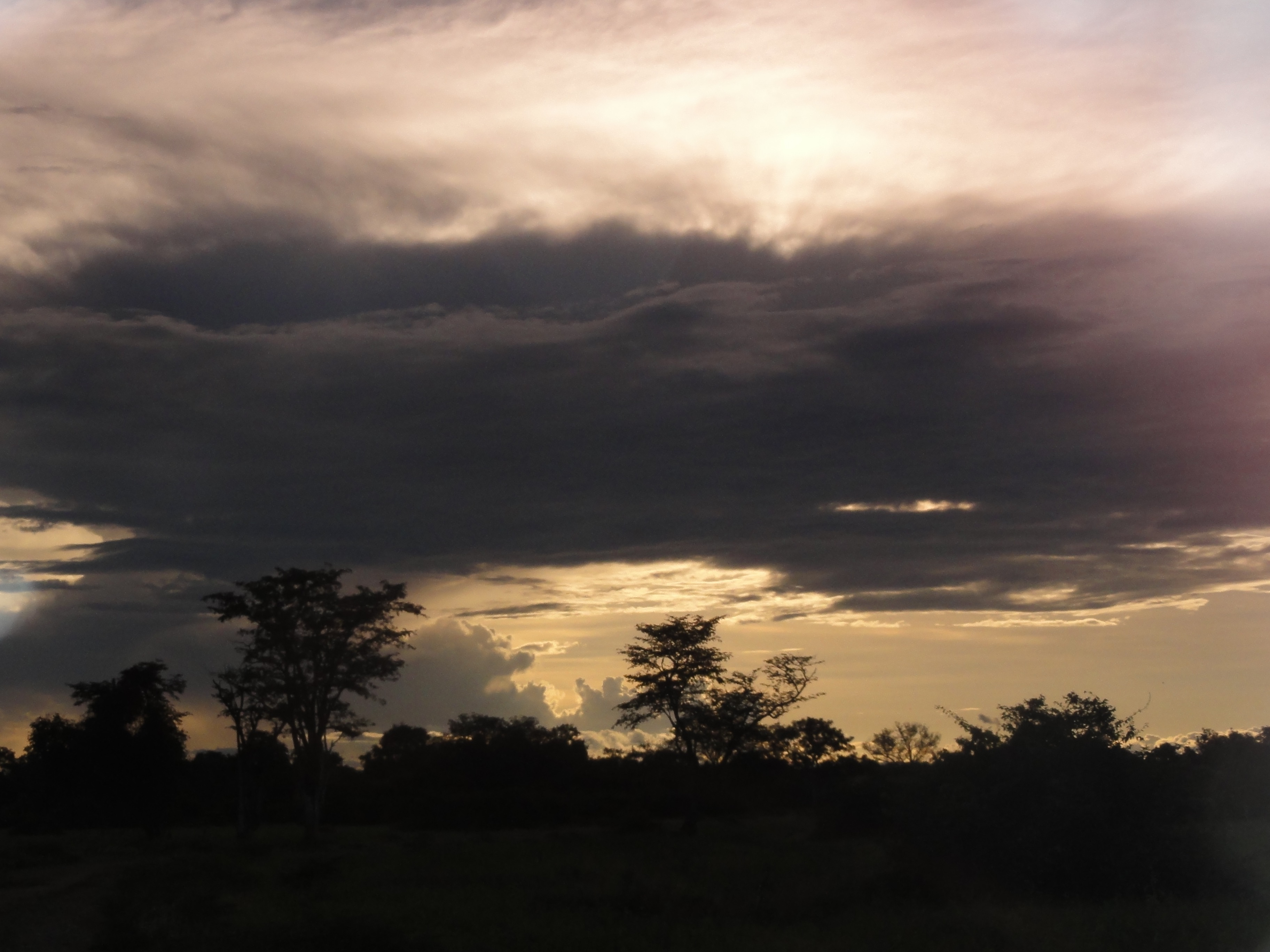 Sunset in Lower Zambezi