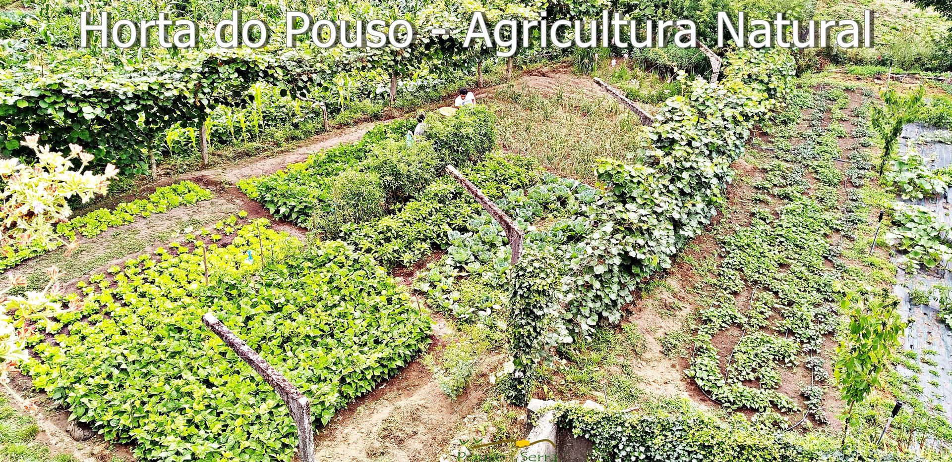 Horta Natural