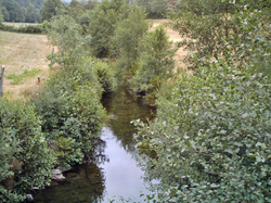 Rio Paivo, afluente do rio Paiva