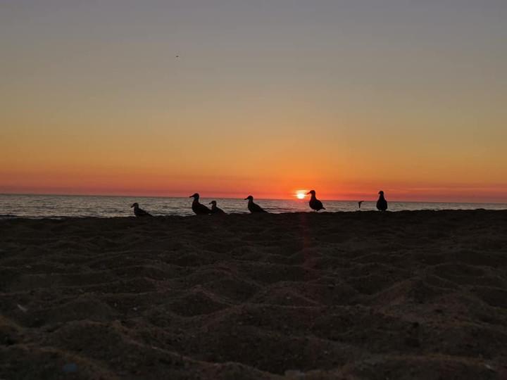 anoitecer na praia da aguda.jpg