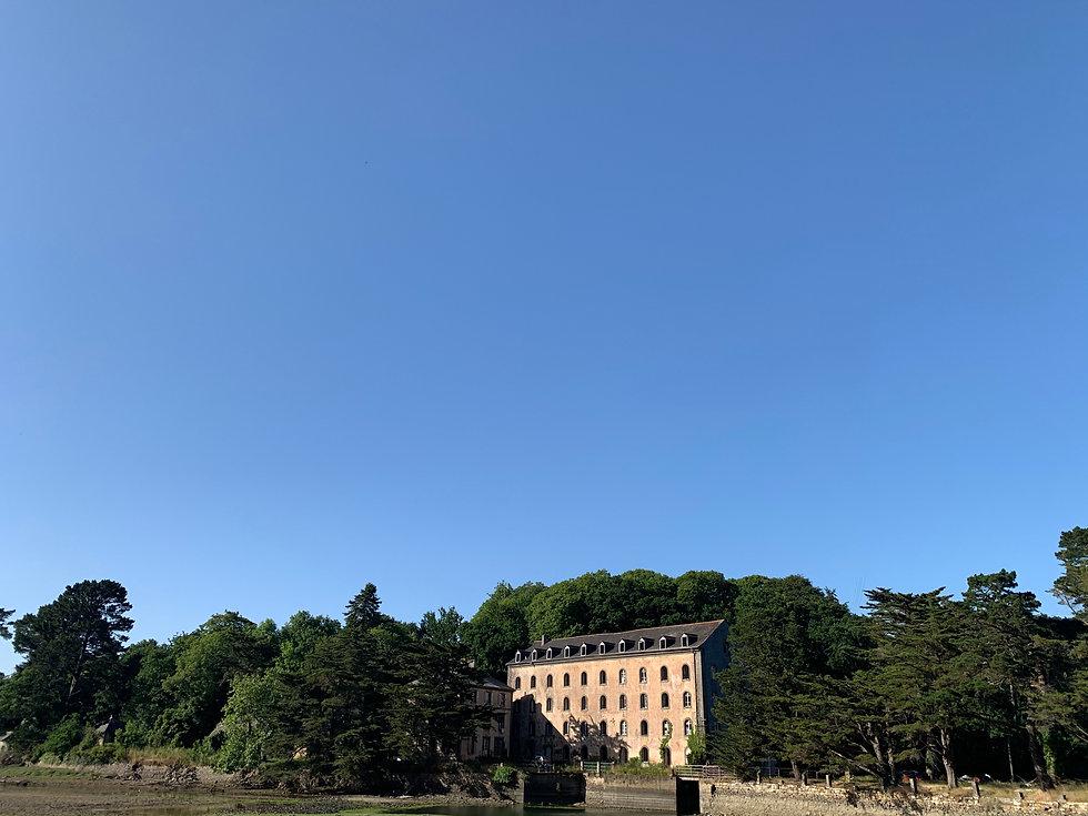MM sort des arbres et grand ciel bleu.jpg