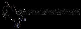 FCMA Logo Horizontal Transparent.png