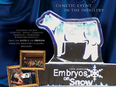Embryos on Snow Sale is Tonight!