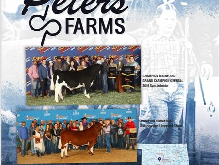 Peters Farm Phone Bid Off