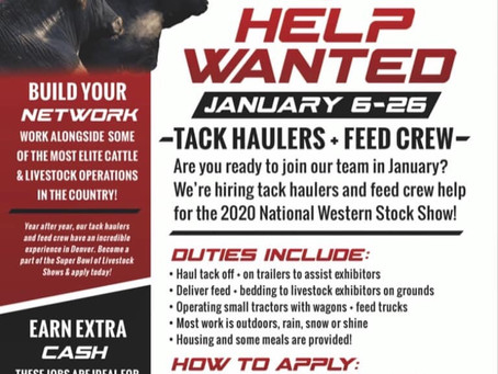 NWSS Is Looking For People To Join Their Team