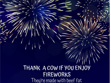 Happy Fourth of July from the  Show Circuit Team!
