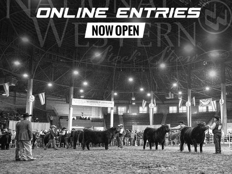 NWSS 2020 Online Entries