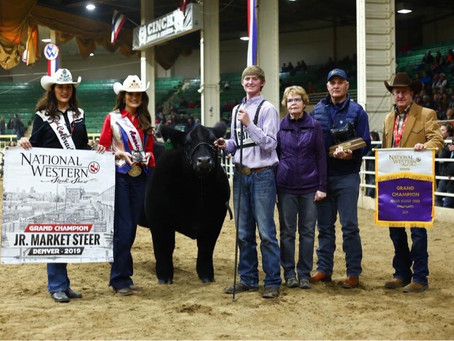 "Texas Teen Wins the ""Super Bowl of Steer Shows"""