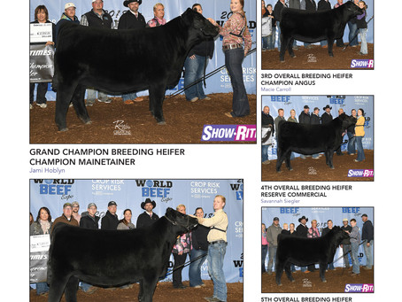 Show Results: World Beef Expo, Heart Of it All, Minnesota Beef Expo