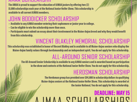 AMAA Scholarships