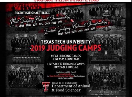 Summer Judging Camps