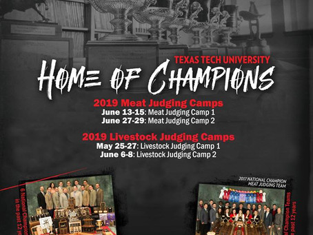 Mark Your Calendars for These Judging Camps