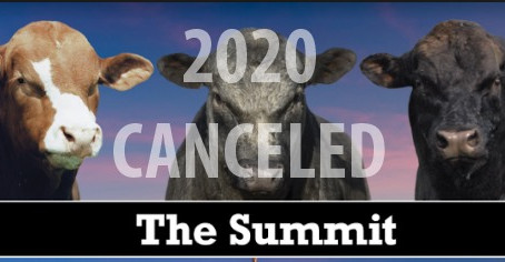 The Summit 2020 - Cancelled