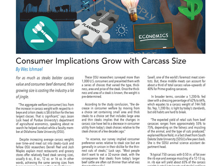 The Big Picture: Consumer Implications Grow with Carcass Size