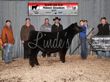 Show Results: Scarlet & Gray Midwest