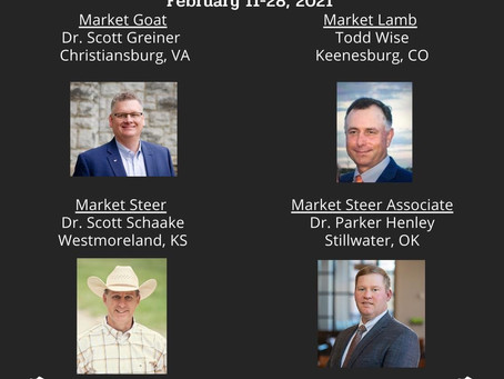 San Antonio 2021 Jr Market Judges