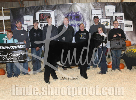 Champions from Wilmington College Aggies show in Clinton, OH