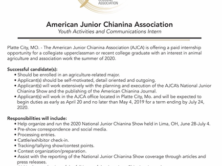 AJCA Internship Opportunity