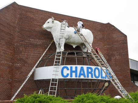 """""""The Big White Bull on I-29"""" has a New Look"""