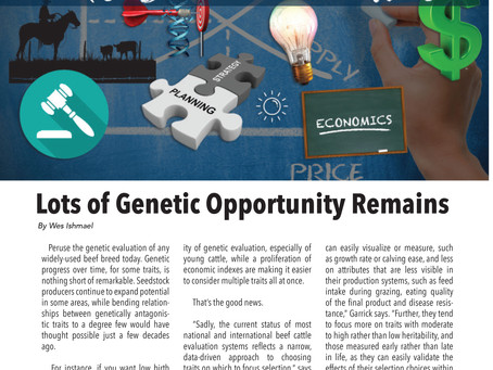 The Big Picture: A Lot of Genetic Opportunity Remains