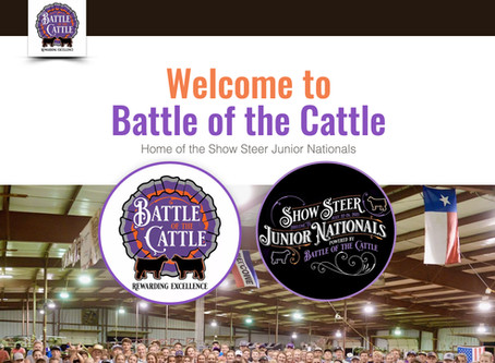Battle Of The Cattle Junior National Steer Show!