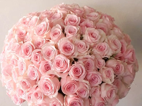 Timeless Pink Roses