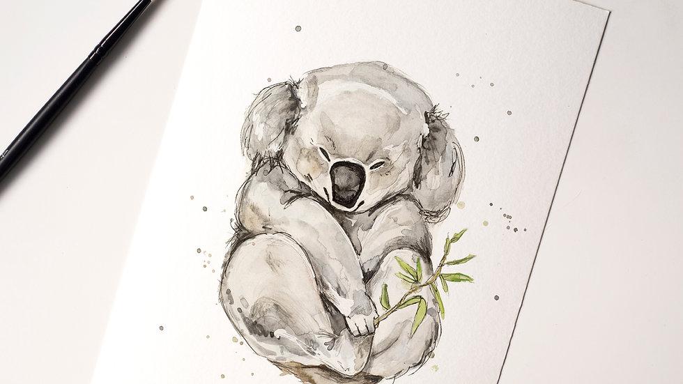 Koala Snuggle