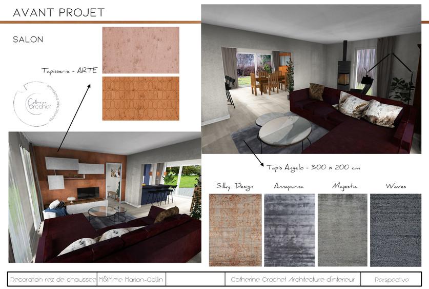 projet Collin-Salon.jpg