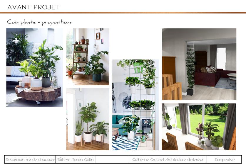 projet Collin-Plantes.jpg