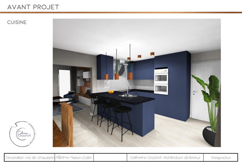 projet Collin-cuisine.jpg