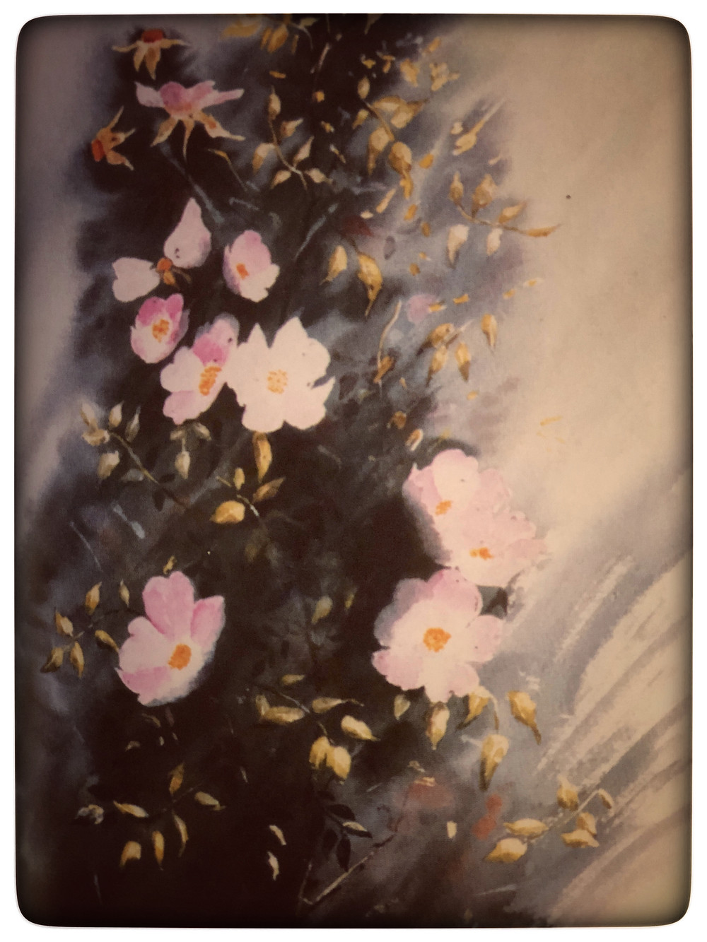 """Passage and Sketch from """"A Year in a Meadow"""", Pat Smith, 2002 (my grandmother's cousin)"""