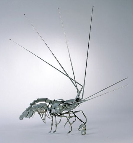 insect-007