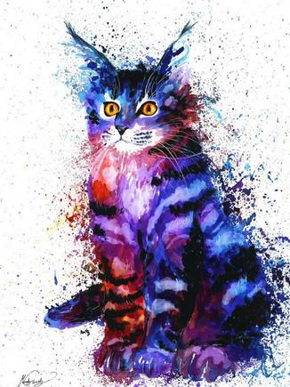 Краски радуги. Рисунки зверей.
