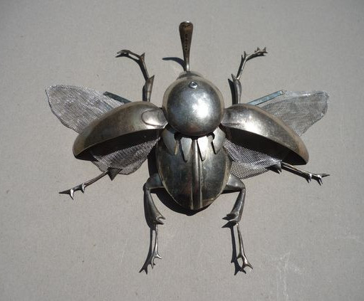 insect-004