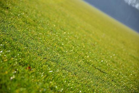 Boise Idaho Lawn Maintenance Company