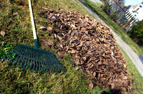 Boise Idaho Leaf Clean Up Company