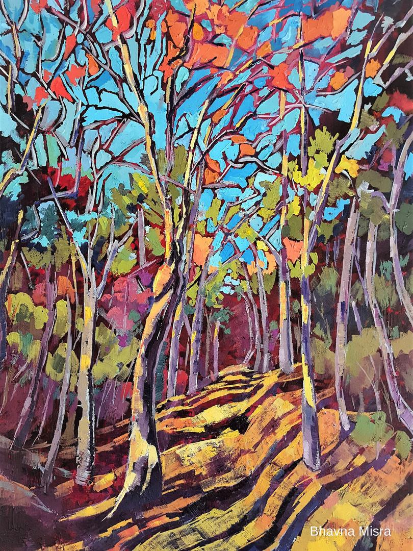 Welcoming Woods