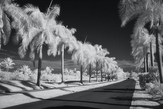 Bulevar, Dorado, Puerto Rico.jpeg