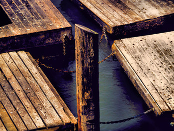 Sea Lion Platforms at Pier 39, San Francisco, CA