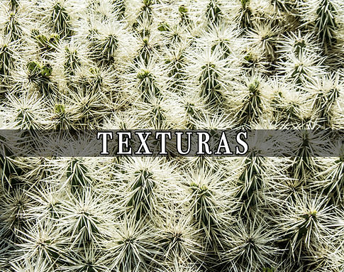 Fotografía de texturas por Carlo Cuñado
