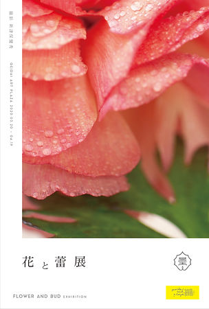 花と蕾展.jpg