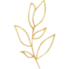 Gold_floral_element_34_edited.png